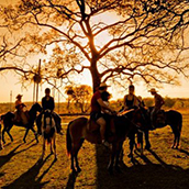 Saiba tudo sobre a cavalgada: uma ótima prática para relaxar