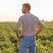5 características que definem um bom líder rural