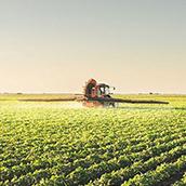 5 dicas para se destacar no Mercado do agronegócio