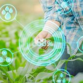 Comece A Apostar Na Agricultura De Precisão